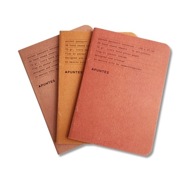 3 Mexican Passport Notebooks